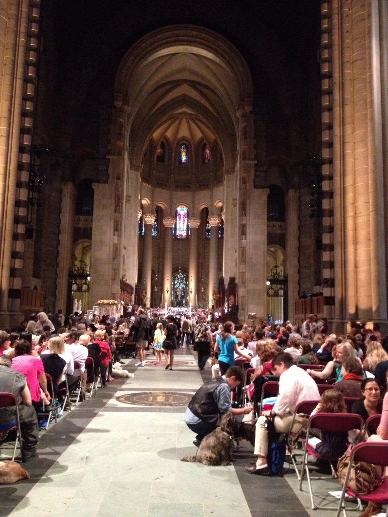 The blessing of the animals, St. John the Divine