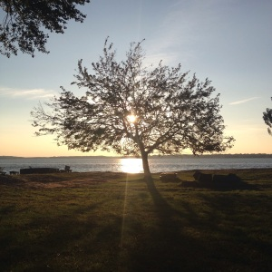 From the Shelter Island Retreat.