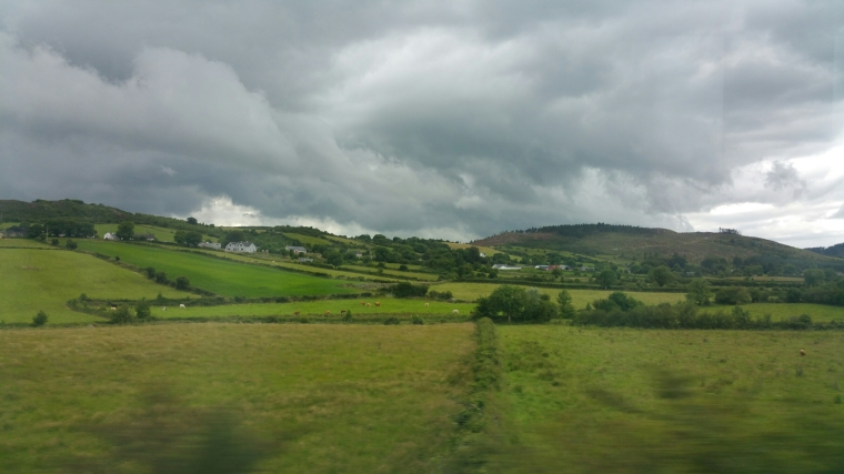 I snapped this pic from the train to Belfast from Dublin this summer. The countryside is so delicious.