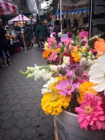 our beautiful nearby farmer's market